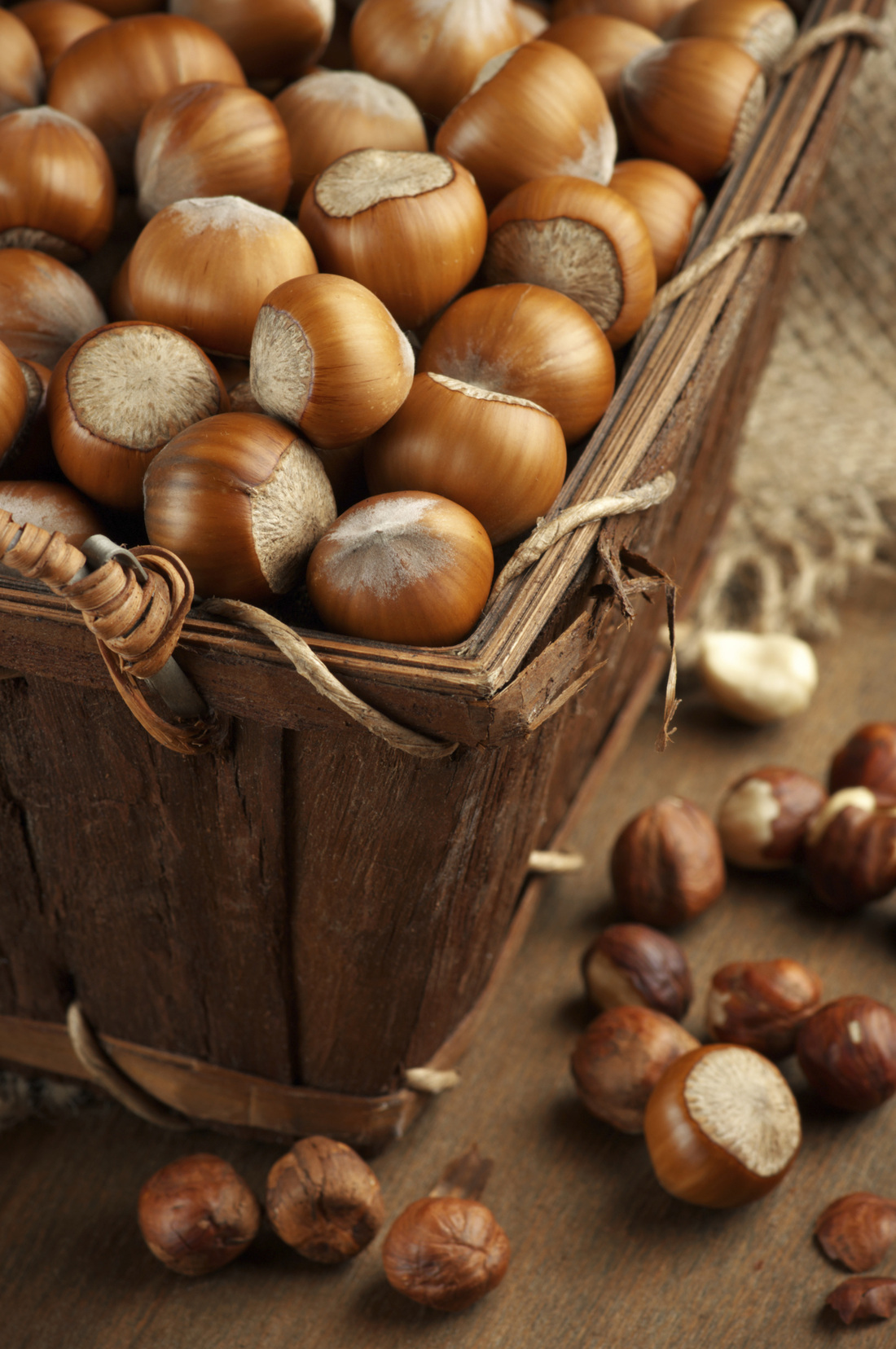 Hazelnuts in their shells, one of the things I miss from childhood