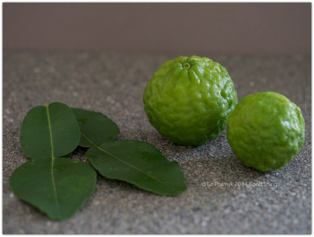 Kaffir limes and leaves, grown and photographed by Liz Posmyk, Good Things