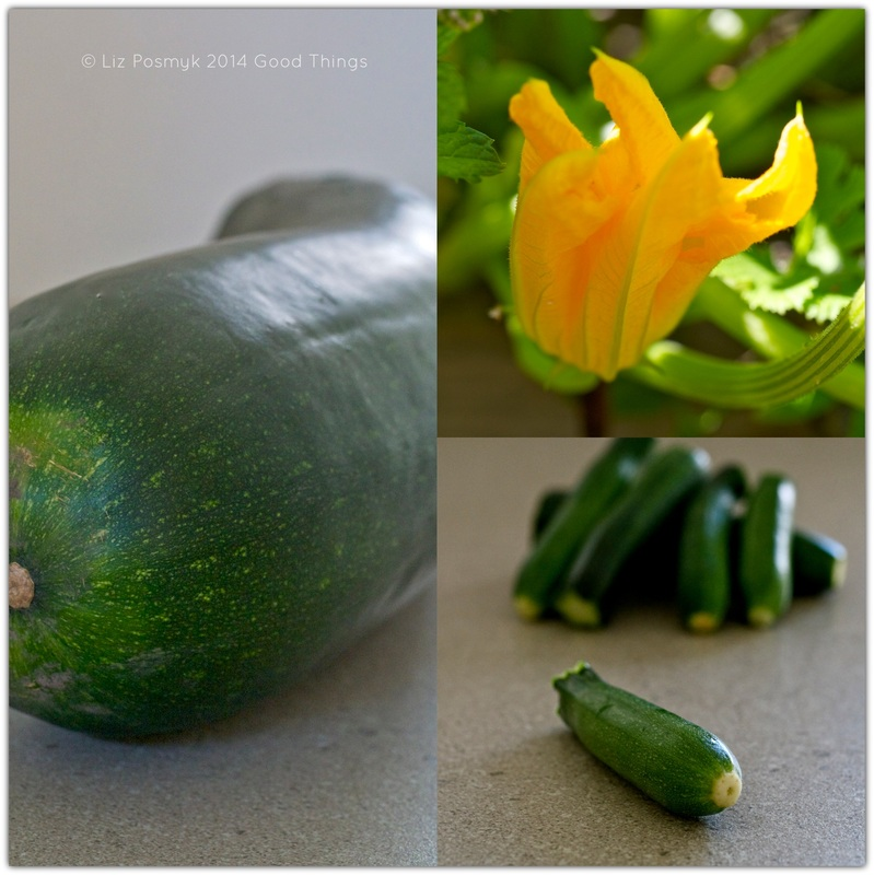 Zucchini collage by Liz Posmyk Good Things