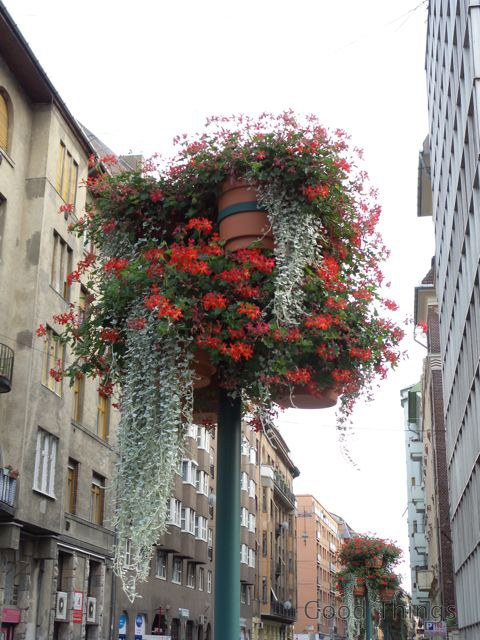 Flower baskets on the streets of Budapest
