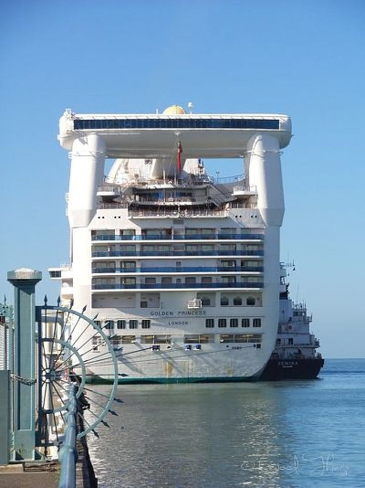 The Golden Princess at Station Pier in Melbourne - photo by Liz Posmyk, Good Things