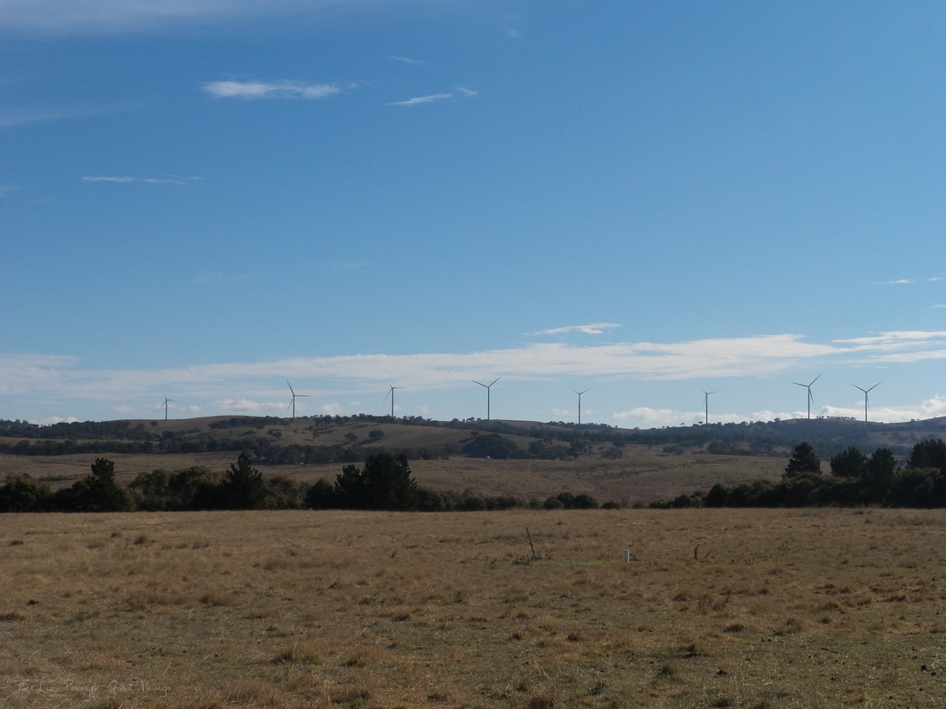 Views to the hills and the wind farm