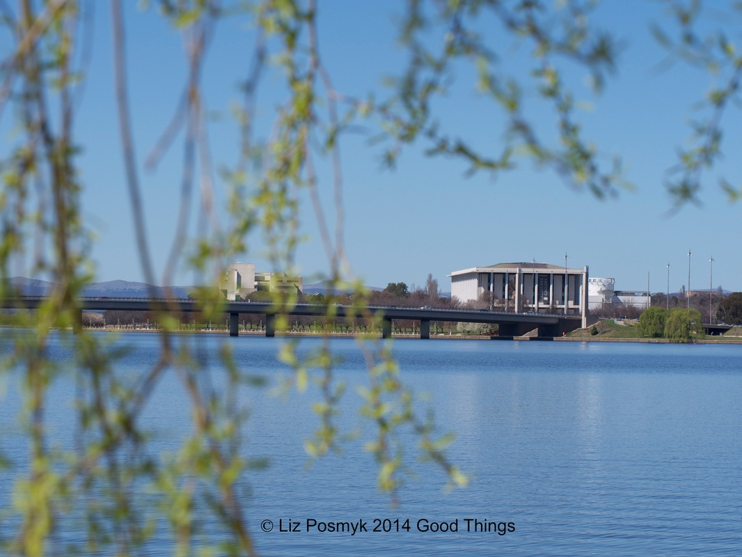 National Library of Australia in Canberra by Liz Posmyk