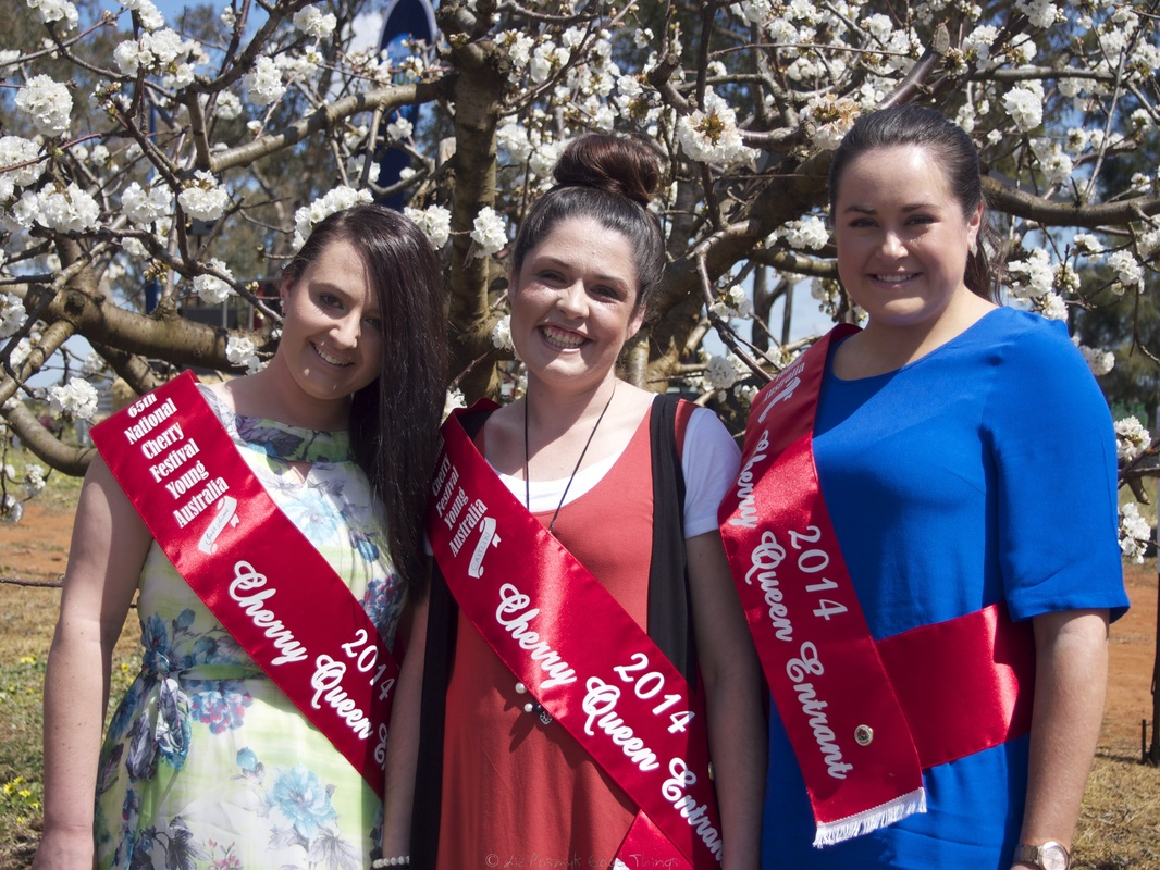 Emily Hardy, Caitlin Muller and Jessica Saines, 2014 Cherry Queen entrants 65th National Cherry Festival Young NSW