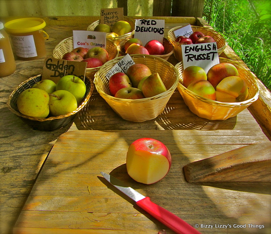 Autumn and a visit to Pialligo Apples II by Liz Posmyk