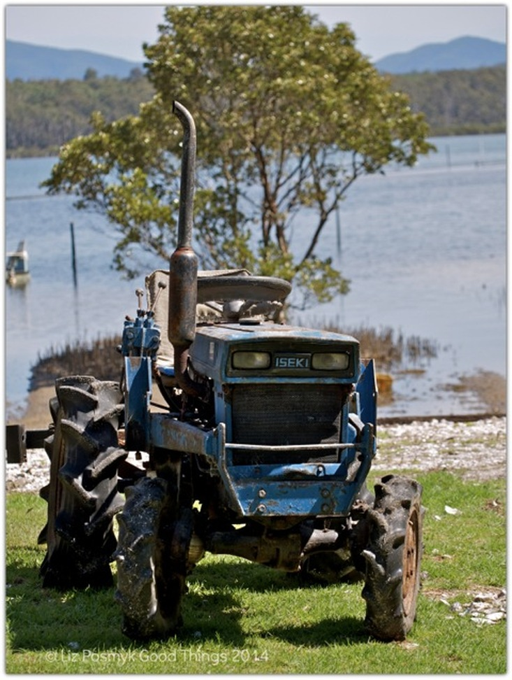 Tractor at Wapengo Rocks Oyster Farm by Liz Posmyk Good Things