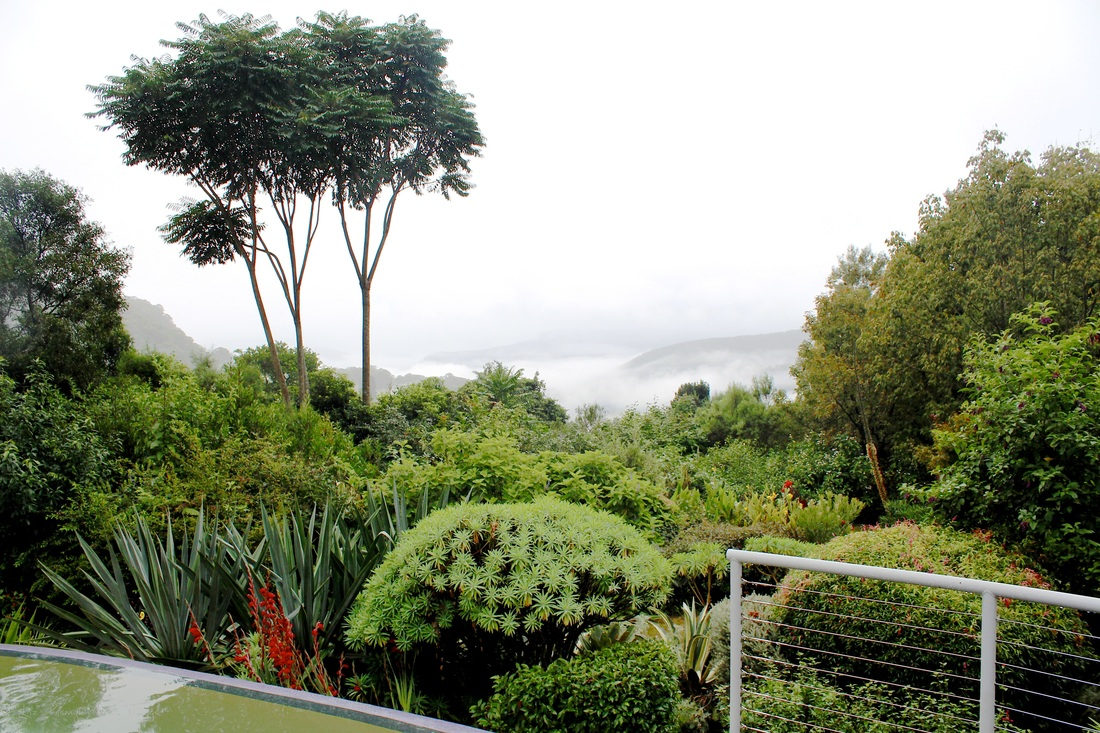 Mist rolls in over the valley at Sahali in the Kangaroo Valley