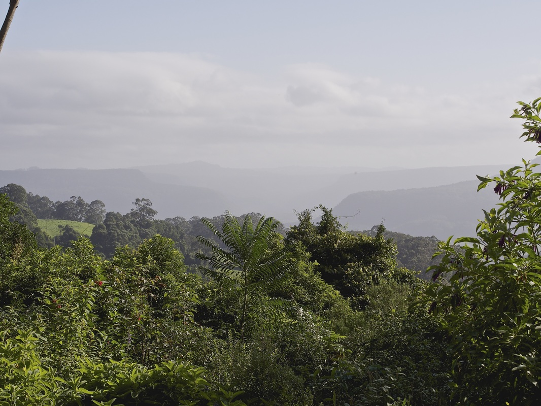 Mist and the views from Sahali - a luxury self contained holiday home in the Kangaroo Valley New South Wales