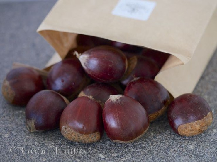Sassafras chestnuts grown near Bungendore NSW - photo Liz Posmyk Good Things