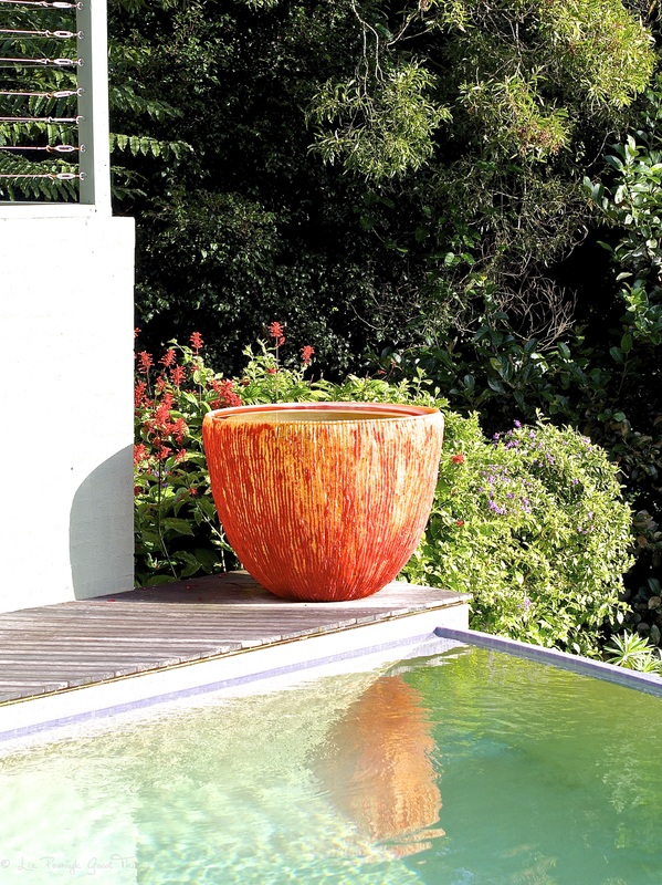 Stunning water pot out by the pool at Sahali - a luxury self contained holiday home in the Kangaroo Valley New South Wales