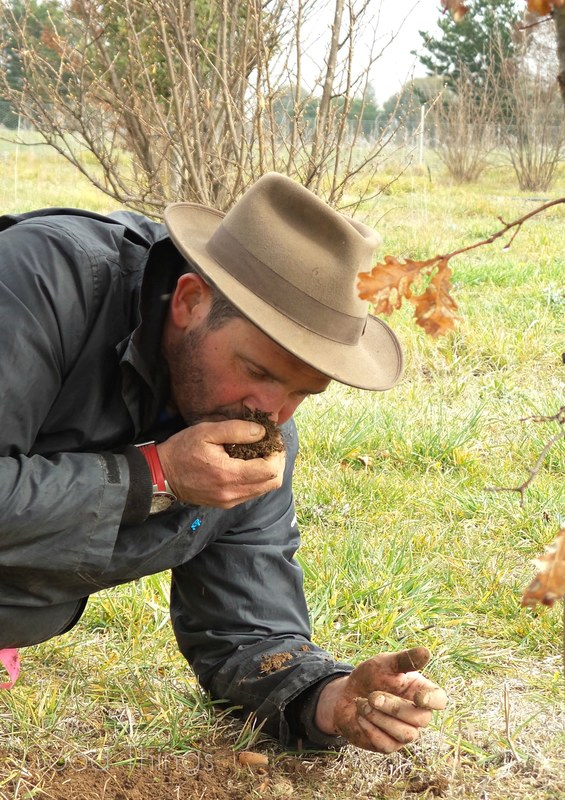 Damian smells the truffle at Turalla Truffles near Bungendore - photo Liz Posmyk Good Things