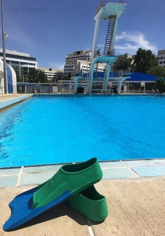 Flippers and the dive pool at the Canberra Olympic Pool - Liz Posmyk